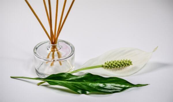 Блог за здраве, уелнес и ароматерапия