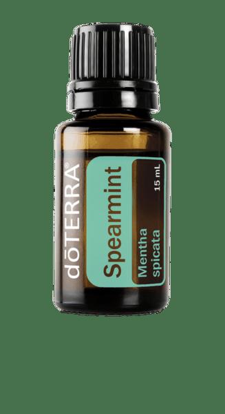 Сладка мента / Spearmint/ Mentha spicata 15 мл