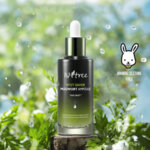 ISNTREE Spot Saver Mugwort Ampoule, 50 ml