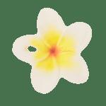 Oli&Carol Гризалка Hawaii the Flower