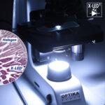 Бинокулярен микроскоп, модел B-157