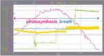 Комплект Фотосинтеза - Вариант I