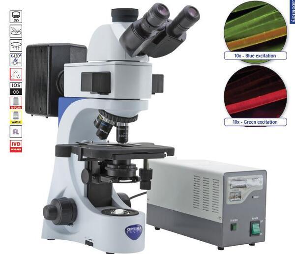 Тринокулярен, флуорисцентен микроскоп, модел В-383FL