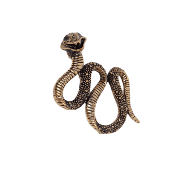 Брошка змия