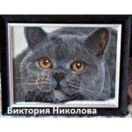 """Диамантен Гоблен """"Сиво Коте"""" - 30 x 40 см, Кръгли мъниста"""