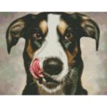 """Диамантен Гоблен """"Кучета на полянка"""" - 35 x 45 см, Кръгли мъниста-Copy"""