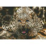 Визуализация на елмазен гоблен Тигър