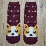 Дамски коледни чорапи с булдог - червено