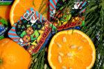 Хартиен ароматизатор - Портокал и Кедър