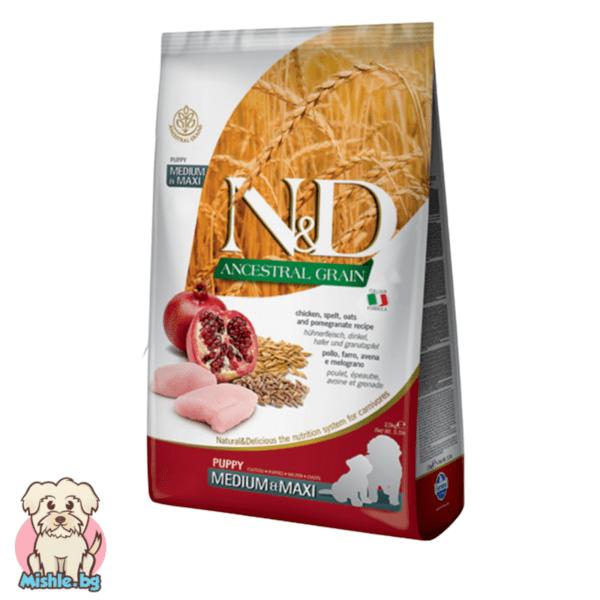 N&D Ancestral Grain Adult с Пиле и Нар за подрастващи кучета от средни и големи породи 12кг