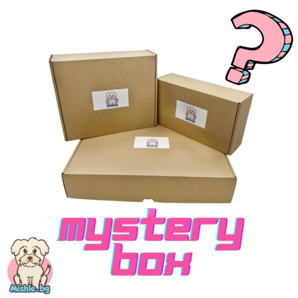 Mystery Box - Мистериозна кутия с изненади за куче