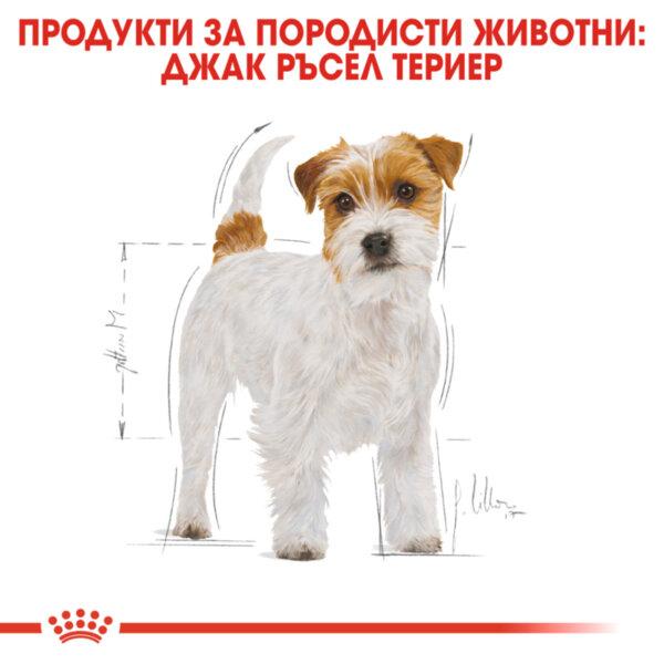 ROYAL CANIN® Jack Russel 1.5kg