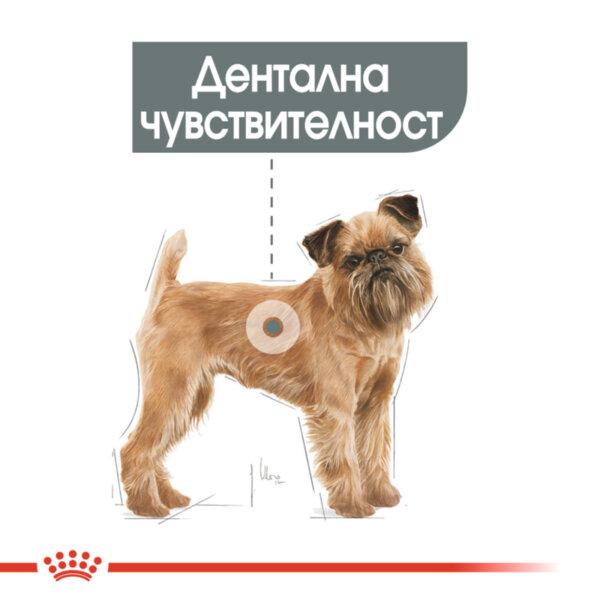 ROYAL CANIN® Mini Dental