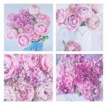 Постери Цветя