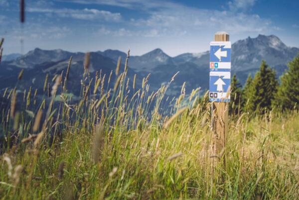 Ориентиране и планински преживявания