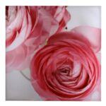 Платно Rose 80/80см