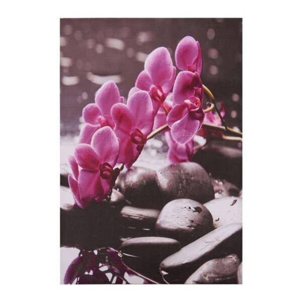 Платно Pink Orchid
