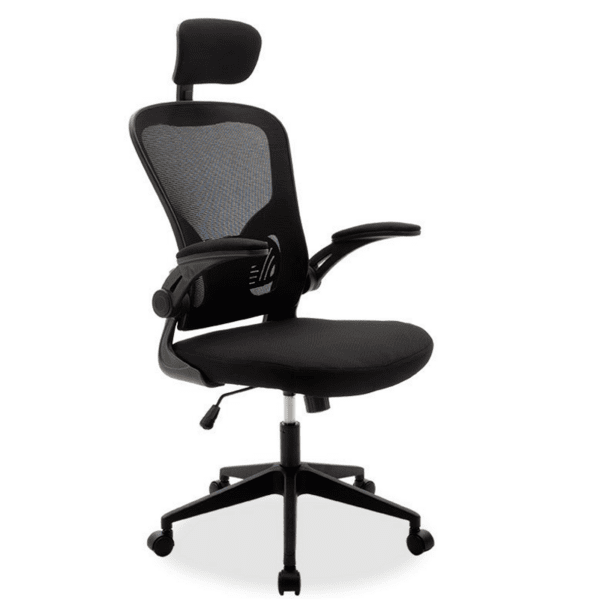 Офис стол  Ergoline черен цвят