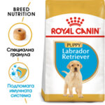 ROYAL CANIN Labrador Puppy ЛАБРАДОР ПОДРАСТВАЩИ