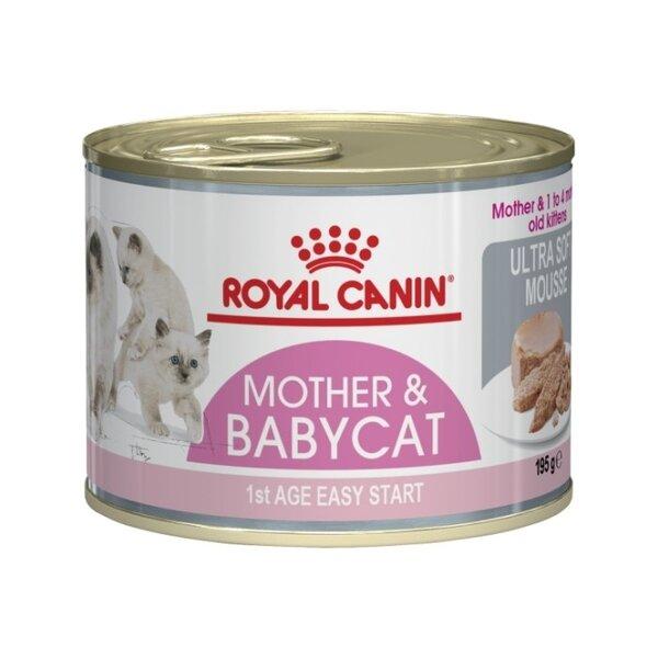 ROYAL CANIN BABYCAT ПОДРАСТВАЩИ КОТЕНЦА
