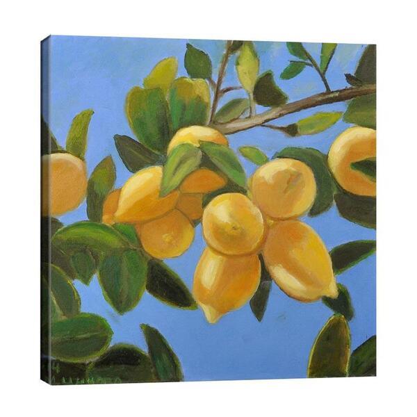 Мая Ценкова - Клонка с лимони №11355