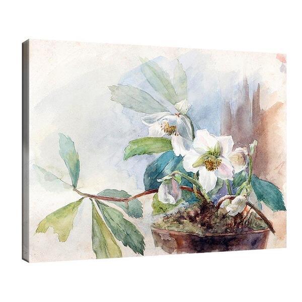Мари Егнер - Снежни рози. №11486