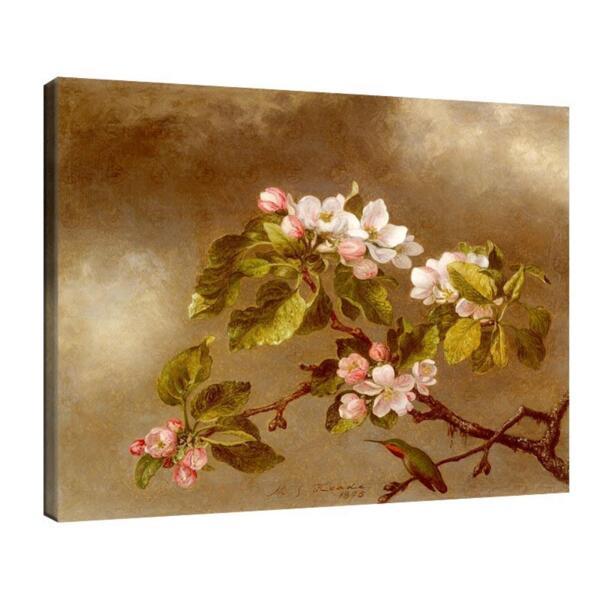 Мартин Хийд - Колибри и ябълка №11613
