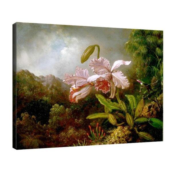 Мартин Хийд - Орхидеи в джунглата №11617