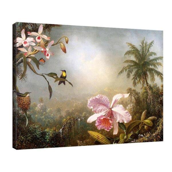 Мартин Хийд - Орхидея, колибри и пеперуда №11621