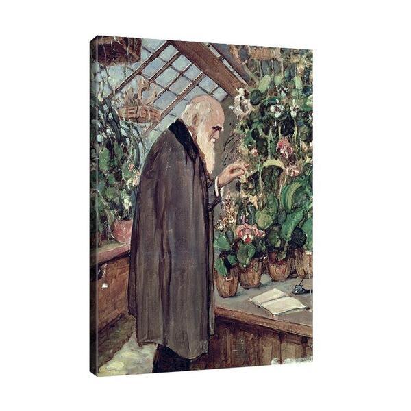Джон Колиър - Чарлз Дарвин №11680