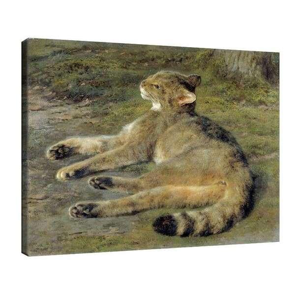Роза Боньор - Дива котка №7950