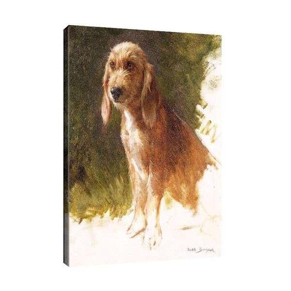 Роза Боньор - Проучване на куче №7983