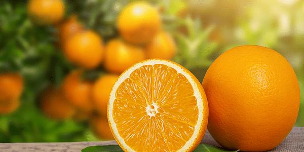 Colagen și vitamină c: de ce sunt atăt de buni împreună și cum puteți îngriji pielea cu ajutorul lor