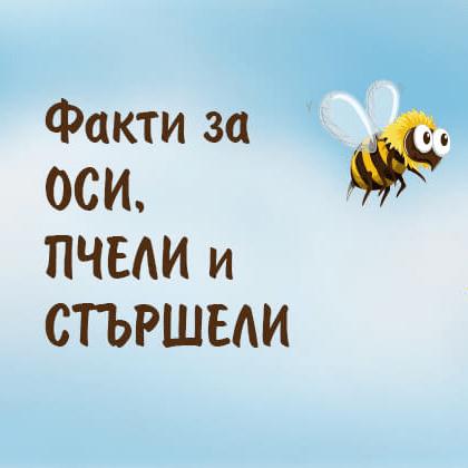 Интересни факти за осите, пчелите и стършелите