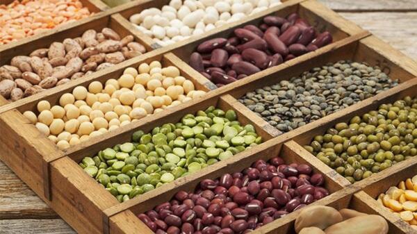 Растителни или животински протеини?