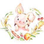 Бебешко одеялце с картинка прасенце