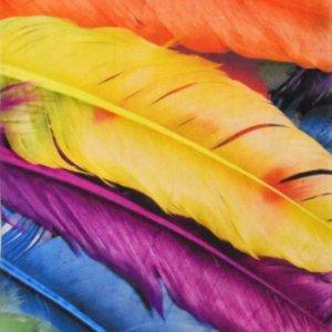Плажни кърпи Изображение