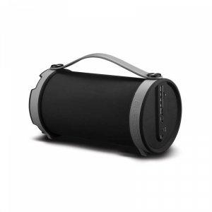 Аудио система DIVA BS22