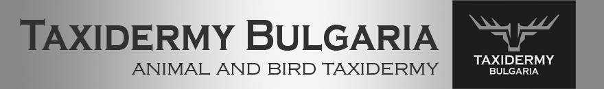 TaxidermyBulgaria