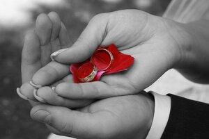 Сватбени халки Изображение