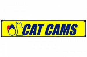CatCams Изображение