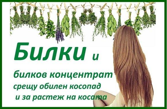 Билкови лосиони и билков концентрат за растеж на косата. Ефикасни рецепти за по-бърз растеж и поникване на коса