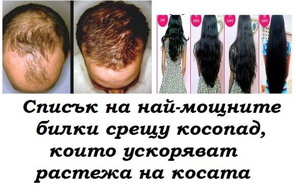 Списък на най-мощните билки, които спират косопада, сгъстяват косата и ускоряват растежа