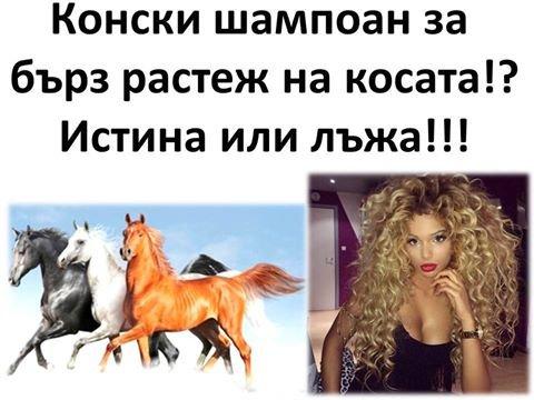 Конски шампоан за бърз растеж на косата!?Истина или лъжа!!!