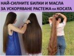 Шампоан за бърз растеж на косата! Как да използваме шампоана за растеж на косата правилно, за да има ефект? Конски шампоан или билков шампоан за бърз растеж да избера? Най-силните билки и мас