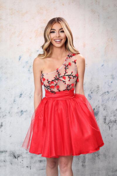 Мегз ЛИМИТИРАНА рокля с цветя и бродерии червена