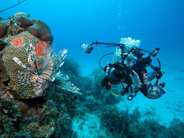 Сертифициран водолазен курс SDI Open Water Scuba Diver