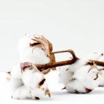 White Boutique Завивка Cottona Tencel