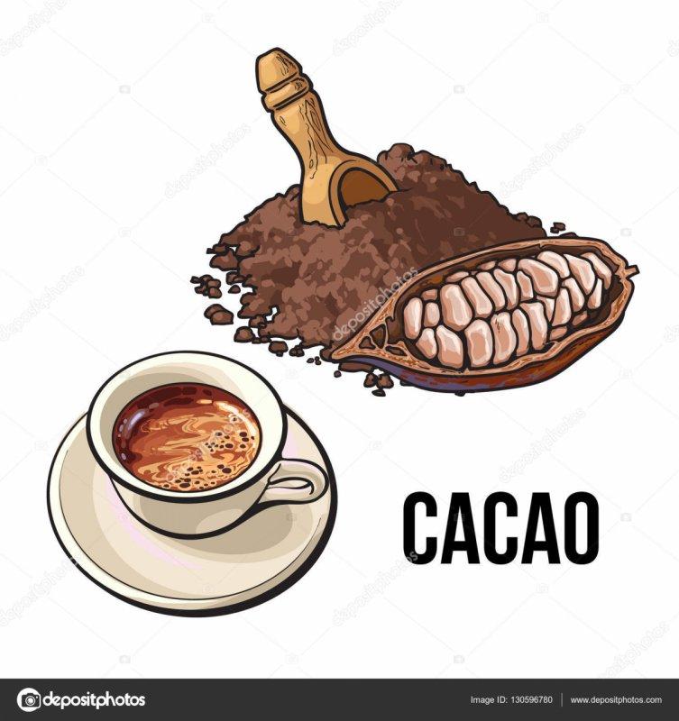 Какаото е много полезно за здравето (2)