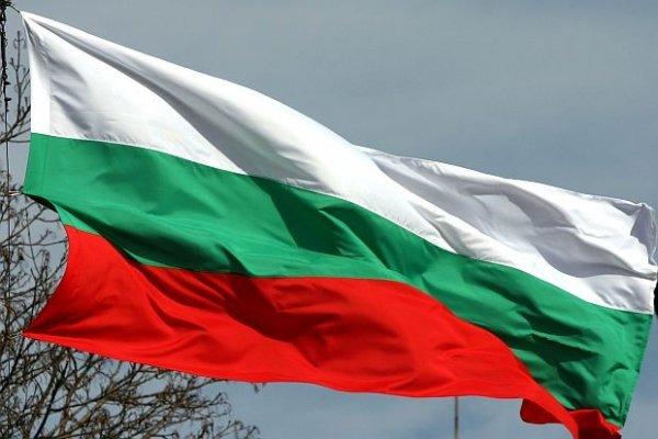 Национален флаг на България - печатан